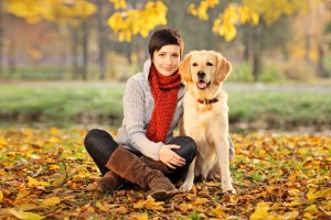 How to hire the right pet sitter