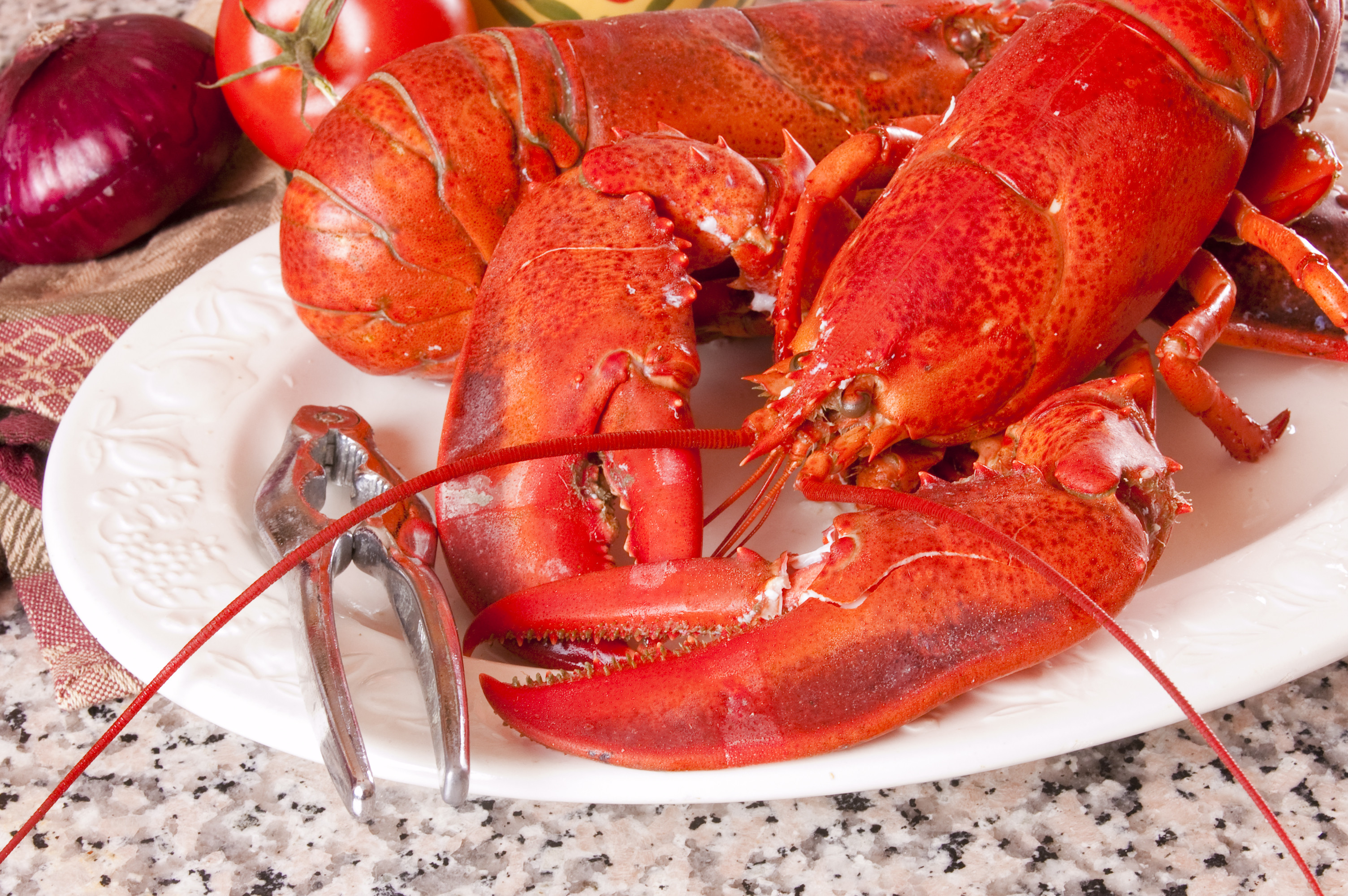 How to have a lobster boil this summer   iVenusiVenus